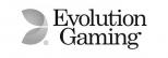 Medverkande företag logotyp - Evolution Gaming Group