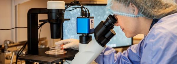 Vävnadsspecifika neonatala stamceller ska användas i kampen mot svåra andningssjukdomar