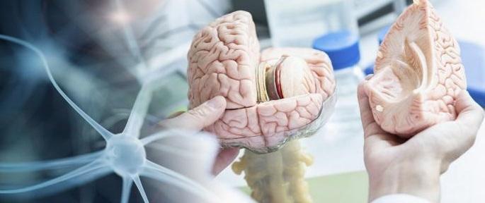 Paradigmskifte inom Alzheimersforskningen